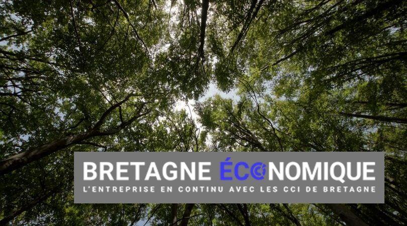 Les Brestois d'EcoTree lèvent 3M€ et ouvrent un premier bureau à l'étranger
