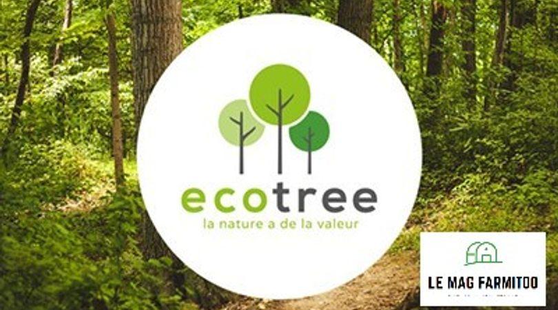 Le concept d'Ecotree et l'origine de l'idée