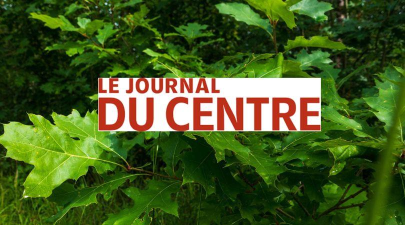 Plus de la moitié des arbres du bois des Chamonts appartenant à la société EcoTree ont été vendus