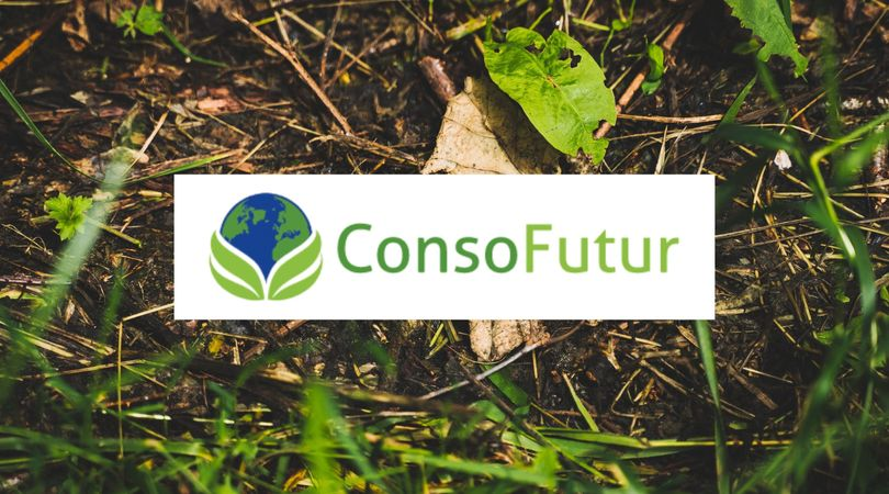 Les 5 start ups du futur - EcoTree