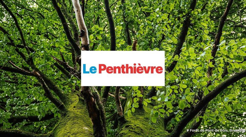 Accord Thermique : l'entreprise qui entretient les forêts avec EcoTree !