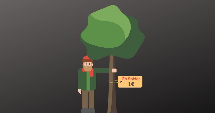 Pourquoi 1 arbre = 1 euro n'a pas de sens