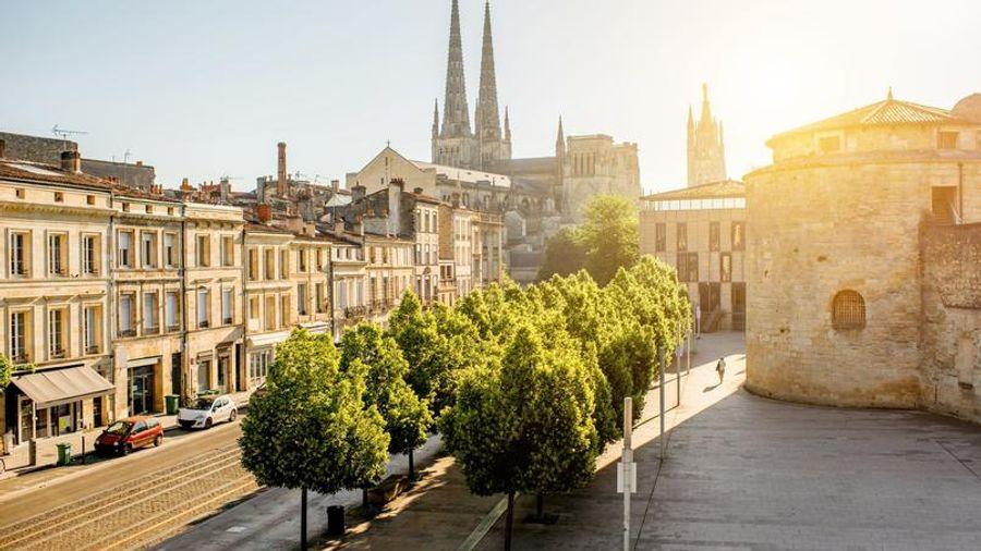 Bordeaux lutte contre la chaleur en plantant des arbres
