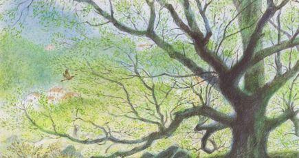 Les arbres font la ville