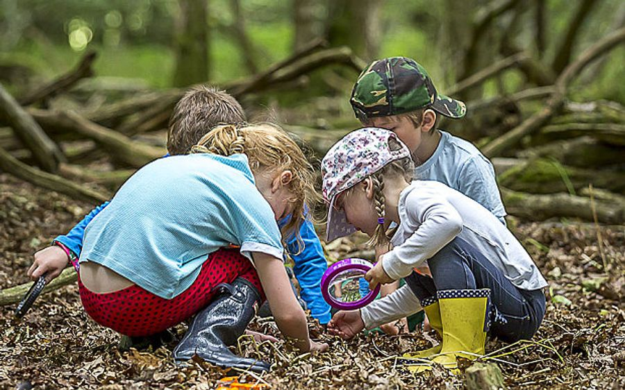 Forest school : un modèle qui inspire la France