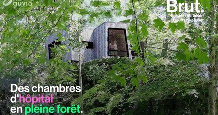 Norvège : des chambres d'hôpital en forêt