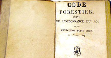 Le code forestier au service de la protection des  forêts françaises
