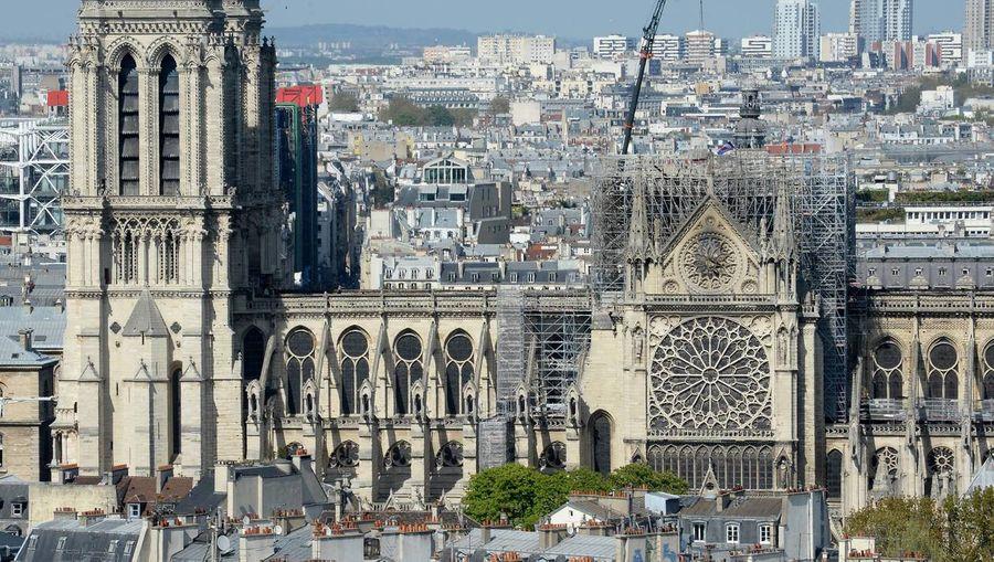 Charpente de Notre-Dame : nous pouvons la rebâtir