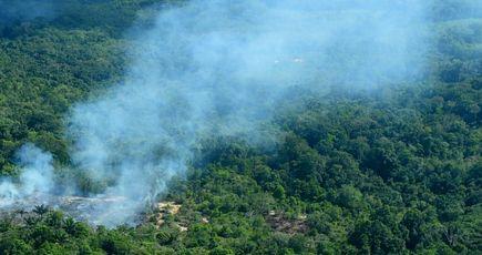 Incendies dans la forêt amazonienne