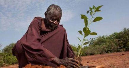 « L'homme qui a arrêté le désert » reçoit le Nobel alternatif
