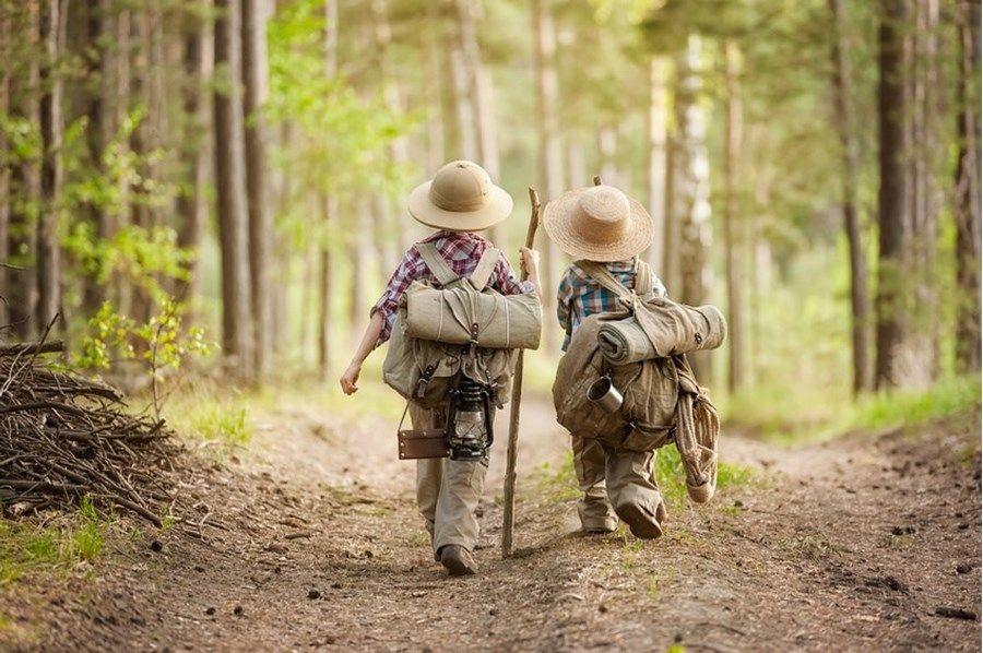 L'école dans les bois : le concept danois arrive en France !