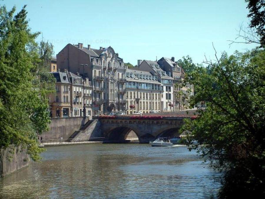 20 000 arbres seront plantés à Metz