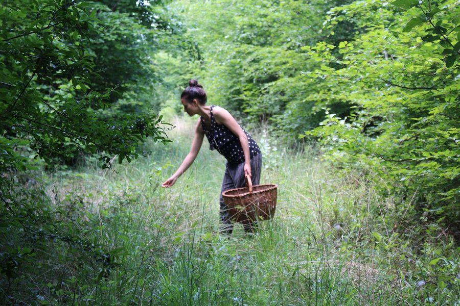 Allemansrätt : en Suède, chacun peut profiter des bienfaits de la forêt