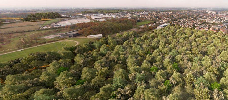 Nouvelle forêt au nord de Paris : le projet avance !
