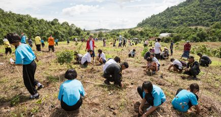 Planter un arbre pour chaque examen réussi ?