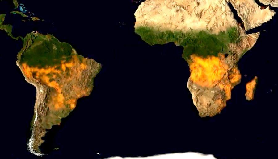 Feux de forêt : année moyenne, épisodes sans précédent