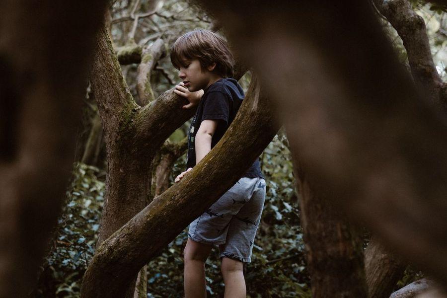 Loisirs en forêt