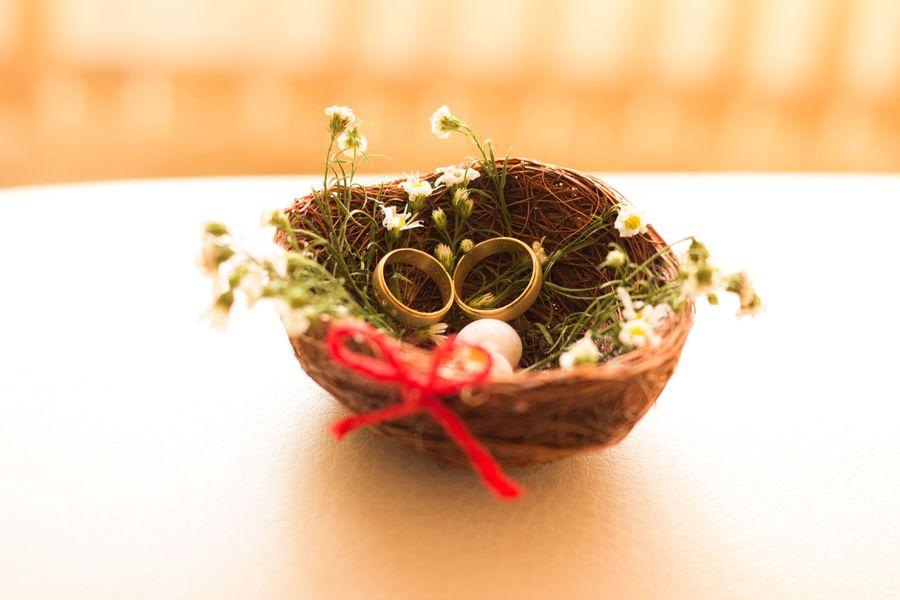 Noces de bois : et si vous lui offriez un arbre en cadeau !