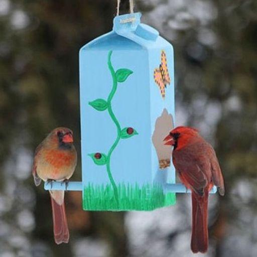 Bricolage : Fabriquer une mangeoire pour oiseaux