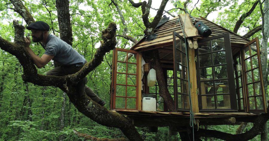 Un printemps sur un chêne avec Edouard Cortès
