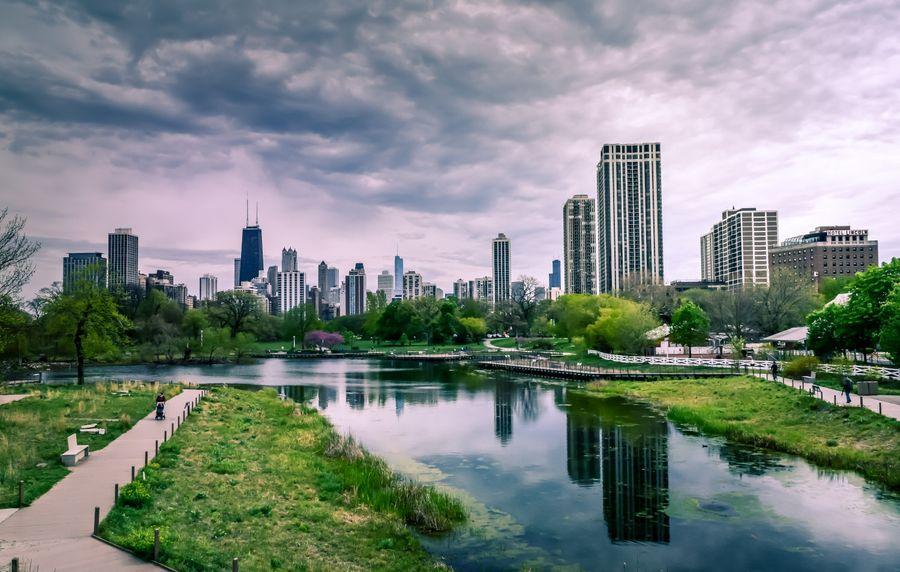 Les arbres absorbent-ils la pollution de l'air ?