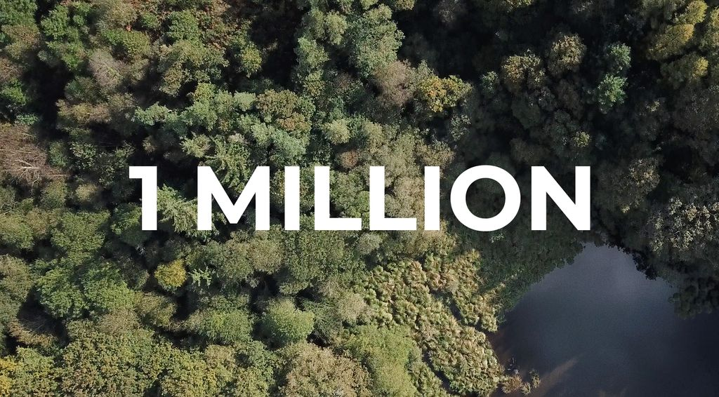 How we've grown to 1 million trees in 5 years