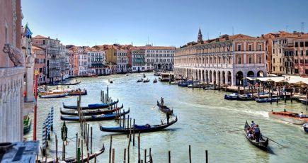 L'extraordinaire forêt de Venise