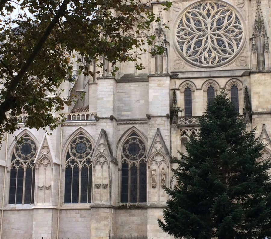 En voulant interdire le sapin de Noël, le maire de Bordeaux se trompe de combat