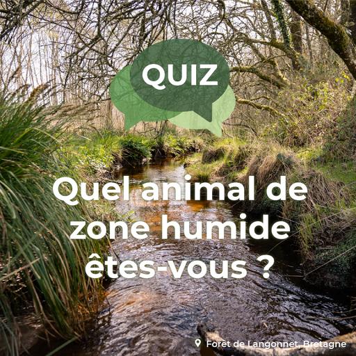 Quiz : Quel animal de zones humides es-tu ?