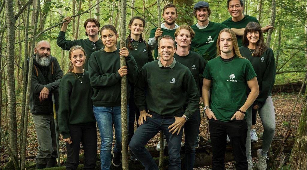 Tag ejerskab over træer fra bæredygtige skove i Danmark